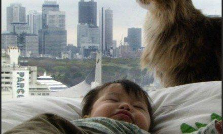 Babies – A Heartwarming and Horrific Documentary