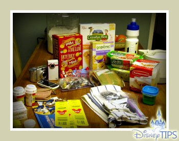 How I save money on food at Disneyland and Walt Disney World WDW