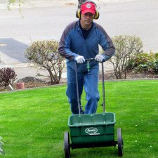 Feeding Your Lawn Results in Healthier Grass and Less Summer Water Use