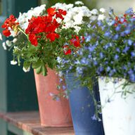 Last Minute 4th of July Party Decorations, Crafts and Recipes