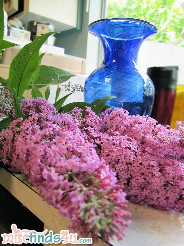 A few cuttings go bring the scent inside.