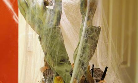 We Took the Kmart Halloween Decor Challenge – How'd We Do?