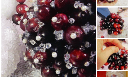 DIY Craft: Fresh Cranberry and Ice Christmas Ball Decorations Tutorial