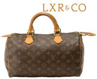 Louis Vuitton Speedy 30 Handbag