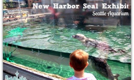 Seattle Aquarium Opens New Harbor Seal Exhibit
