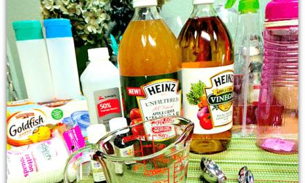 Apple Cider Vinegar – Top 5 Uses
