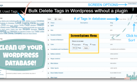 Mass Delete Tags in WordPress Tutorial