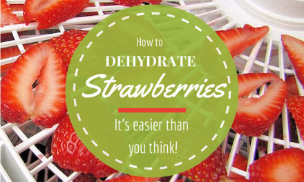 How to Dehydrate Strawberries – Hints & Tips for Drying Berries