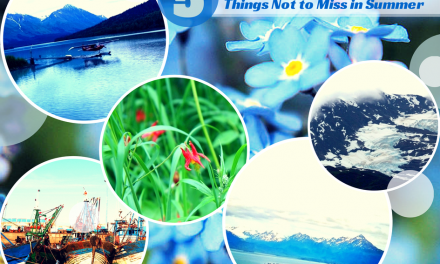 Travel Alaska: 5 Things Not to Miss When Visiting in Summer