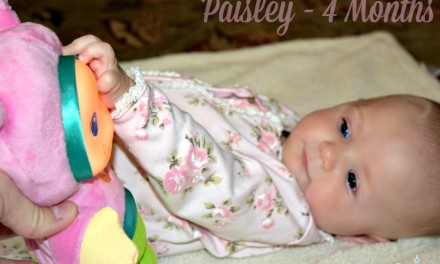 Lullaby Gloworm: Classic Playskool Soft Toys for Toddlers