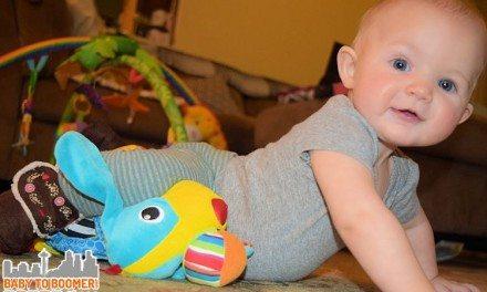 Baby Toys: Lamaze Pippin the Push Along Pup