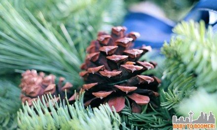 Fresh Holiday Wreaths Shipped Free – Christmas Forest