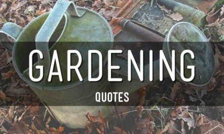 Gardening Quotes to Get you in the Mood for Spring