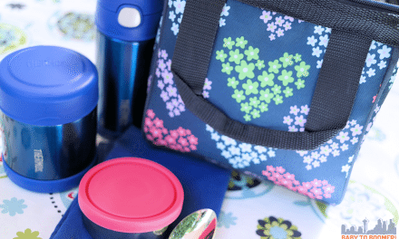 Back to School Lunch Box Containers – Why Choose Stainless Steel