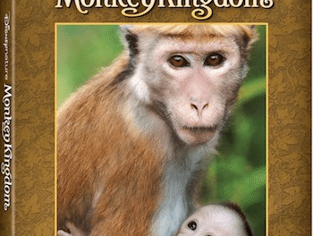 Monkey Kingdom: Family-Friendly Nature Film From Disneynature